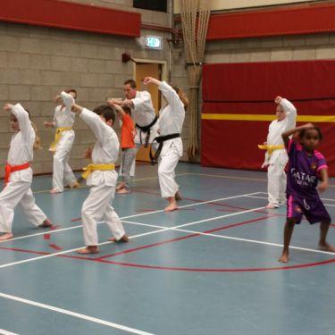 proeflessen karate Steenbergen bij Tamashii