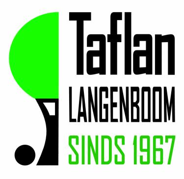 Logo Taflan Dynamic Tennis