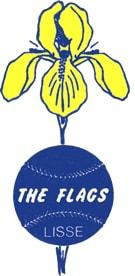 Logo Honk- en Softbalvereniging The Flags