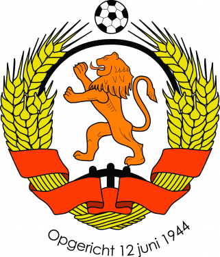 Logo VV Ewijk