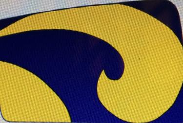 Logo Roeivereniging Iris