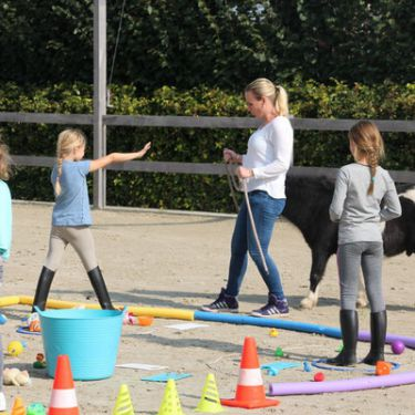 info@coachingmensenpaard.nl