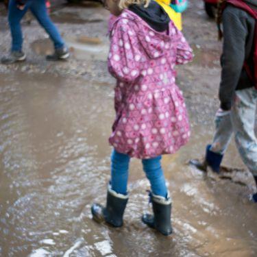 2020-10-10 Herfstexcursie naar het Liesbos